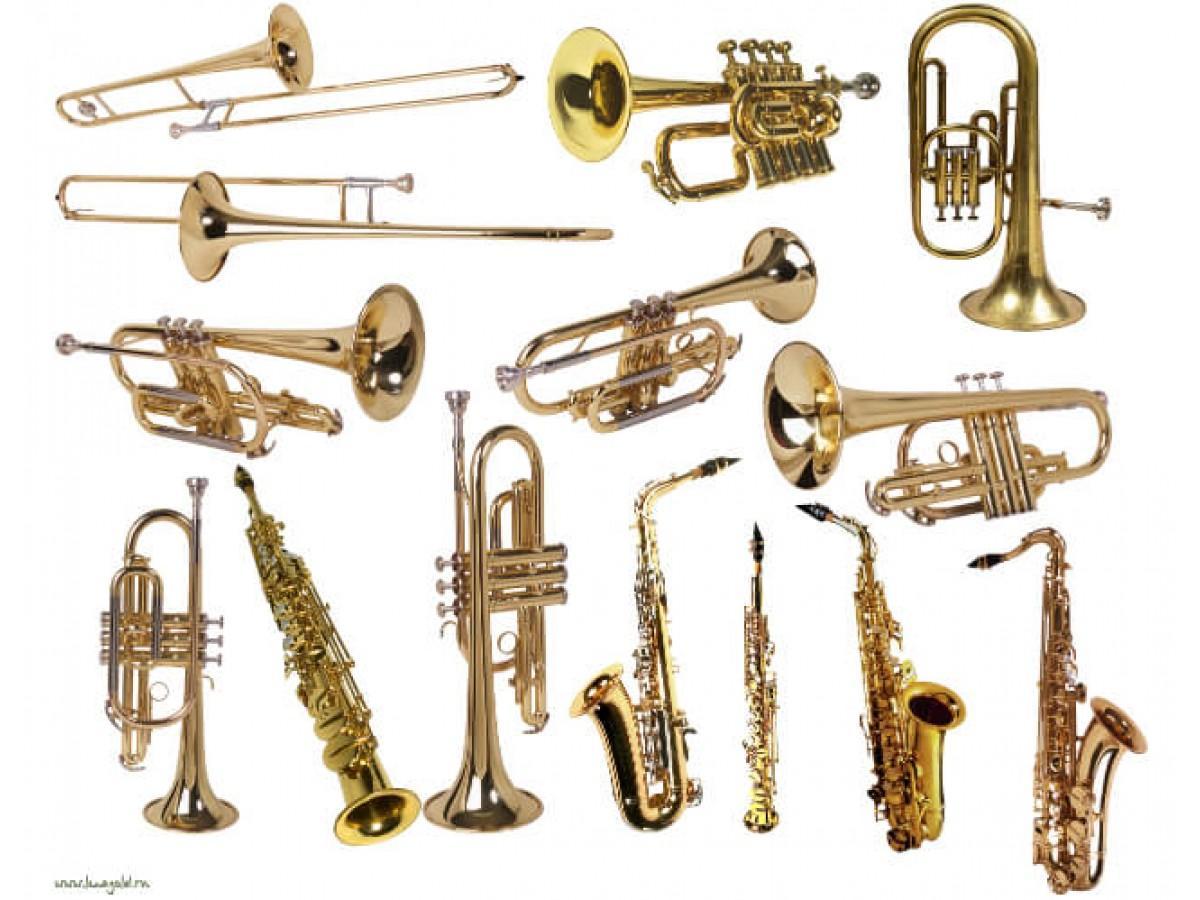 Медные духовые музыкальные инструменты и их особенности