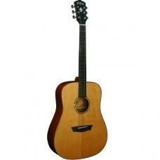 Акустическая гитара Washburn WD160SW