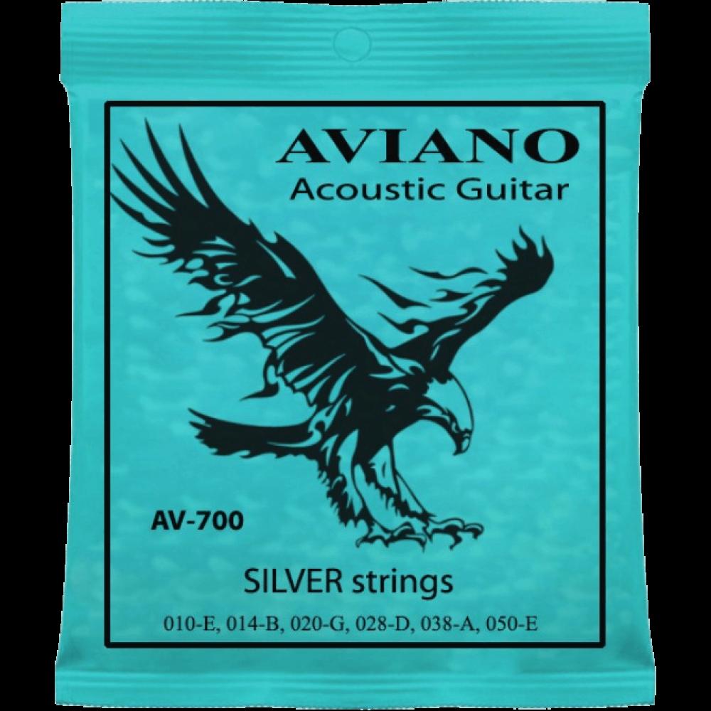 Aviano AV-700 10-50 Acoustic Guitar Silver