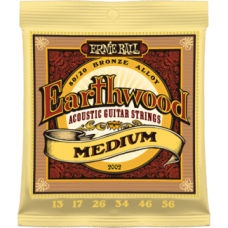 Ernie Ball 2002 13-56 Earthwood Medium 80/20 Bronze